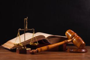 india surrogacy law