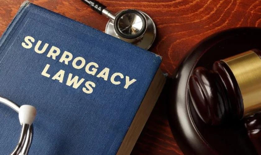 Surrogacy-laws-in-Spain-.jpg